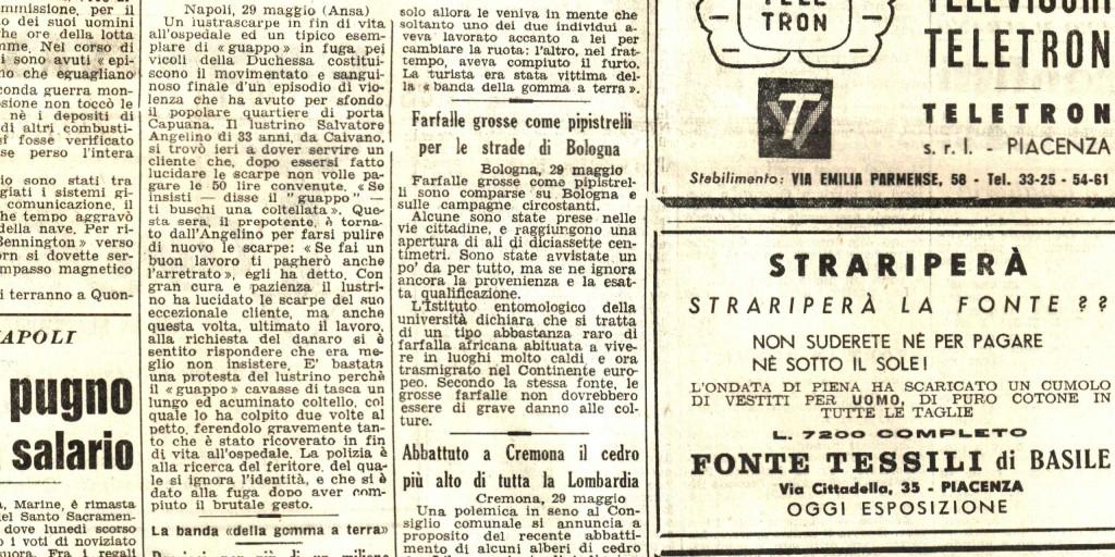 farfalle-grosse-come-pipistrelli-per-le-strade-di-bologna-liberta-30-maggio-1954-pg-06-fb