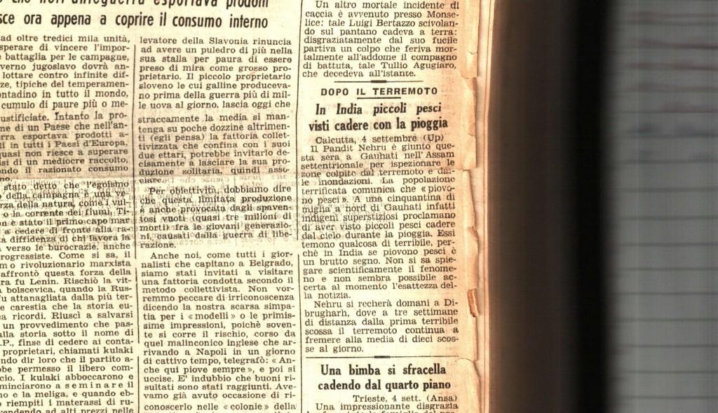 in-india-piccoli-pesci-visti-cadere-con-al-pioggia-liberta-05-settembre-1950-pg-01-fb